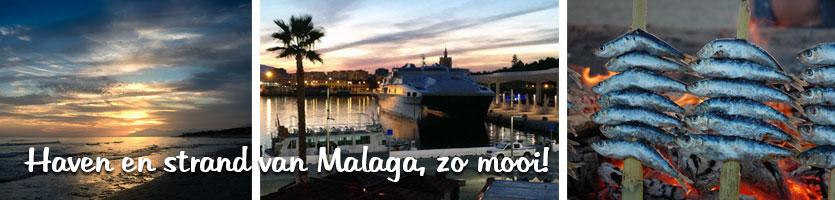 wonen in malaga